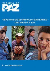 Una propuesta desde la sociedad civil española para el post 2015: la formación de un Panel Internacional para la Erradicación de la Pobreza y la Desigualdad